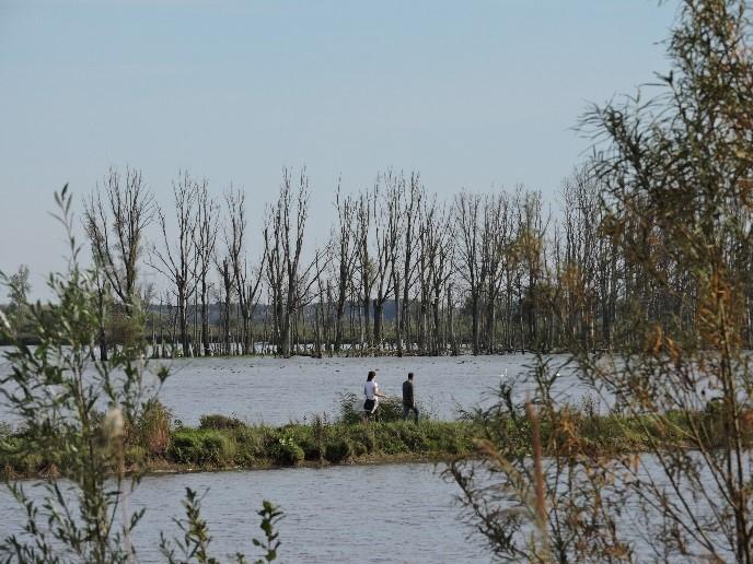 Wetland wandeling